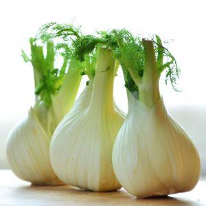 Three beautiful bulbs of flavour sensation fennel
